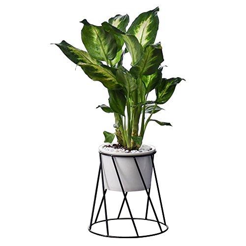 HoneybeeLY Nordeuropäische Geometrische Wand Dekor Container, Einfache Metall Sukkulente Grünpflanze Keramik Eisen Rahmen Blumentopf Kombination Vase -