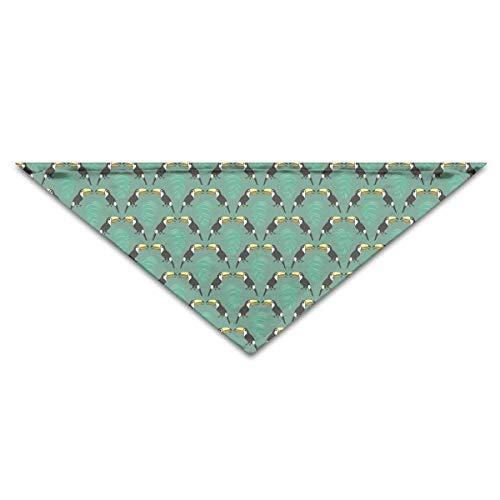 (Pet Bandanas Toucan Birds Palm Tree Leaves Dog Bandanas Schals Dreieck Lätzchen Schals Multi Colored Basic Halstuch Cat Collars)