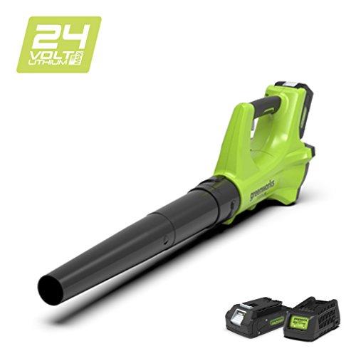 Greenworks Tools 2402207UA Soplador Axial Inalámbrico, 24 V, Verde