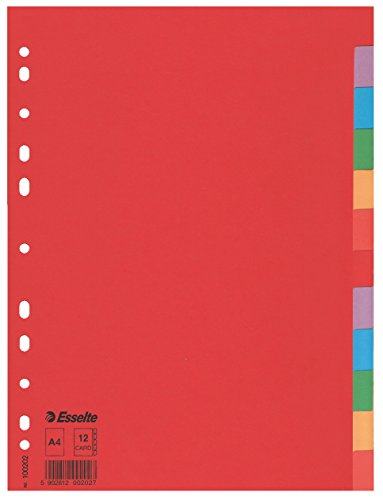 Esselte intercalare, formato a4, cartoncino riciclato, multicolore,100202