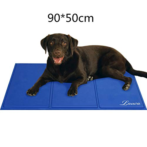 tapis chien grande taille