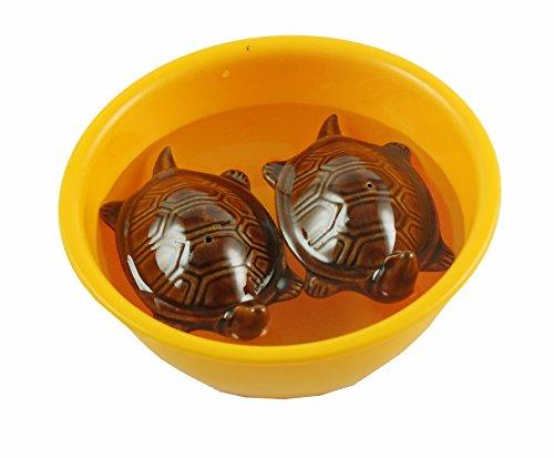 eshoppee vastu fengshui Floating Tortoise Turtle Pair in Bowl