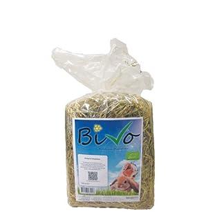 Bivo Organic Meadow Hay - 500g Bivo Organic Meadow Hay – 500g 41A 2BKmgXwmL