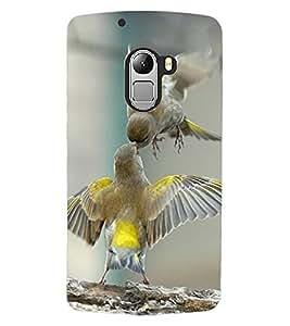 ColourCraft Love Birds Design Back Case Cover for LENOVO VIBE X3 LITE