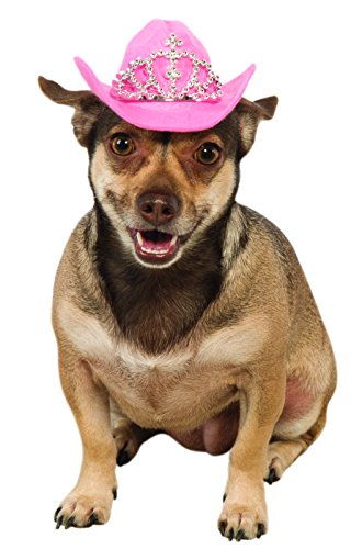 Rubies Costume Pink Cowgirl Hund Hat mit Tiara (Hunde Cowgirl Kostüm)