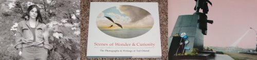 Scenes of Wonder & Curiosity: The Photographs & Writings of Ted Orland by Ted Orland, Sally Mann (1988) Hardcover