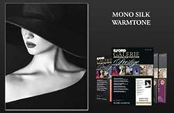 Ilford Galerie Prestige Mono Silk Warmtone 250 Gsm 5x7 Zoll - 127 Mm X 178 Mm 100 Blatt