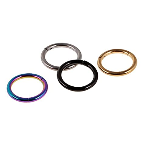 Sharplace 4 Pieces/ Pack Mixed Color 316L Stainless Steel Hinged Septum Ring/Clicker Ear Segment Multi Size to Choose -