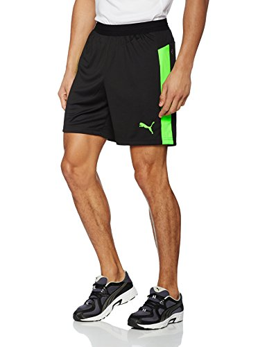 Puma Herren IT Evotrg Shorts Black-Green Gecko, M Preisvergleich