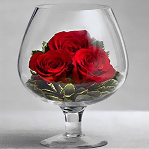 Sharplace Weinglas Förmigen Glas Blumen Vase Glasvase