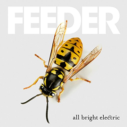 all-bright-electric
