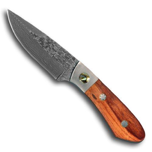 Taschenmesser Jagdmesser Outdoor Messer Gesamtlänge (19,6 cm) aus 67 Lagen Damaszener Damast Stahl - Outdoormesser Freizeitmesser Einhandmesser (Sammlerstück) mit Edelholz und Perlmutt Griff EinLagen