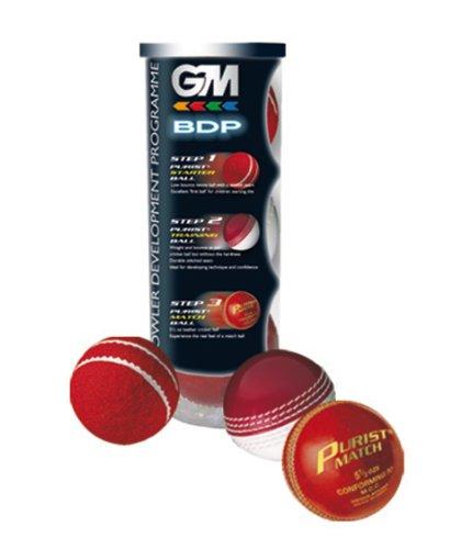 GM Bowling Development Programme Lot de 3 balles de cricket