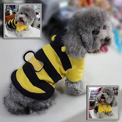 wewwe232783ajshgq 2015 Niedliches Hummel-Kostüm für Hunde und Katzen, für Camping, Picknick und andere Outdoor-Aktivitäten - Farben (Niedliche Hummel Kostüme)