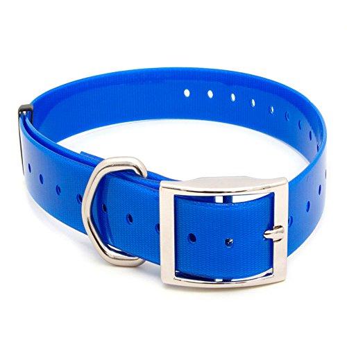 Arcea Polytec Collar para Perro, Azul Eléctrico, 50 mm