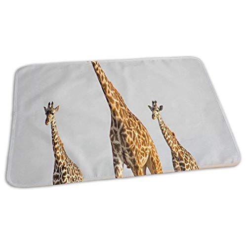 Voxpkrs Changing Pad Giraffe Genome Reveals Clues to Sky Baby Diaper Urine Pad Mat Stylish Adults Bed Wetting Pads Sheet for Any Places for Home Travel Bed Play Stroller Crib Car