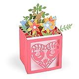Sizzix Card in a Box Christmas by Lynda Kanase gaufrage 3D Impresslits, Multicolore,...