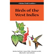 Field Guide to the Birds of the West Indies (Helm Field Guides)