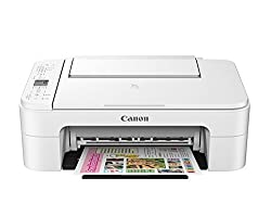 Canon TS 3177S InkJet Printer (White/Black)