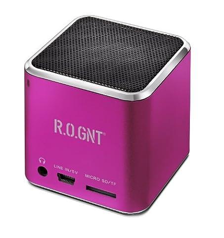 R.O.GNT 0603-28 tragbarer MP3 Lautsprecher (FM-Radio, 80dB, 450mAh, Micro SD-Karten, USB, 3 Watt, 3,5 mm Klinkenanschluss) für iPod