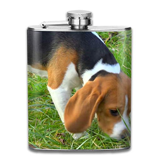 FGRYGF Young Beagle Sniffing Grass Tracking Close Up Fashion Portable Stainless Steel Hip Pallone Whiskey Bottle for Men and Women 7 Oz