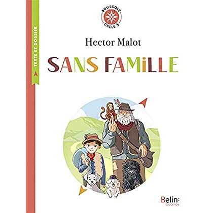 Sans famille : Cycle 3