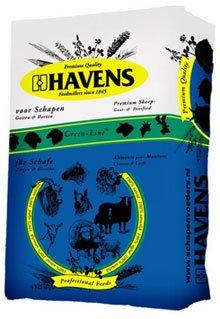 Havens 21111003