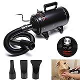 dicn 2800W Dog Hair Dryer Blaster Pet Grooming Hair Dryer High Velocity Motorbike