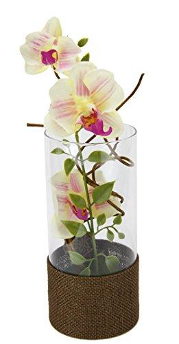 Flair Flower Orchidee, Natur, Polyester, Glas, Kunststoff, weiß/rosa, 10 x 10 x 35 cm