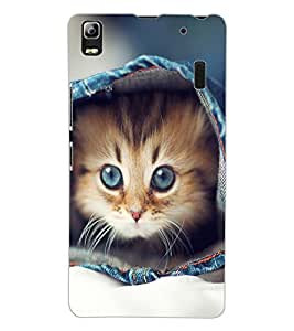 ColourCraft Funny and Cute Cat Design Back Case Cover for LENOVO A7000
