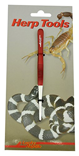 Lucky Reptile PG-14 Futterpinzette 14 cm gerade