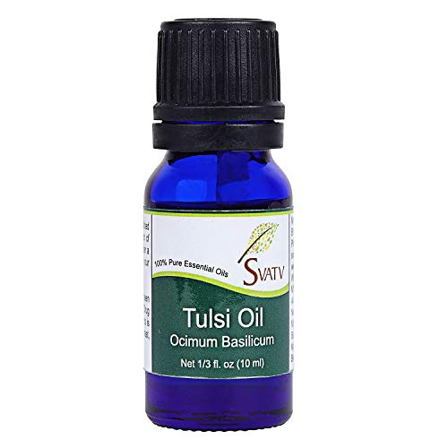 SVATV TULSI (ocimum basilicum) ätherisches Öl 10 ml (1/3 oz) therapeutische Aromatherapie ätherisches Öl -