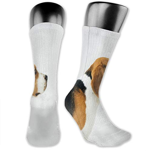 vnsukdlfg Compression Medium Calf Socks,Dog Lover Adorable Puppy Profile Angle Happy Pet Life Studio Photography