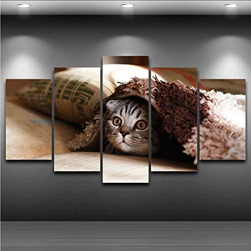 Wiwhy Leinwand Bilder Für Wohnzimmer Wandkunst 5 Stücke Haustier Katze Gesicht Gemälde Home Decor Hd Druckt Tier Kätzchen Poster Rahmen,40X60/80/100Cm