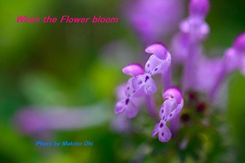 when-the-flower-bloom-hana-no-sakukoro-japanese-edition