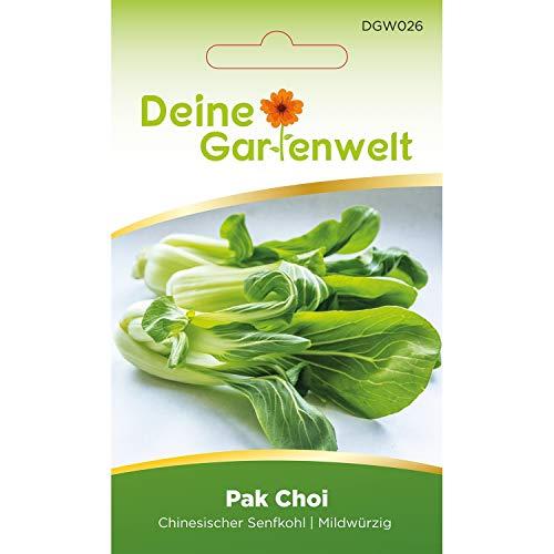Pak Choi Samen   Chinesischer Senfkohl Kohlsamen   Senfkohlsamen   Saatgut für Chinakohl