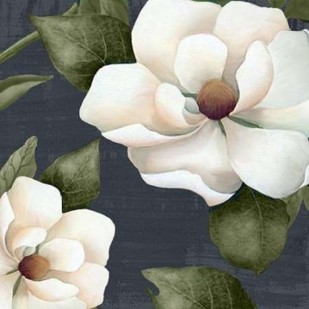 feeling-at-home-kunstdruck-weie-magnolia-1-cm60x60-poster-fuer-rahmen