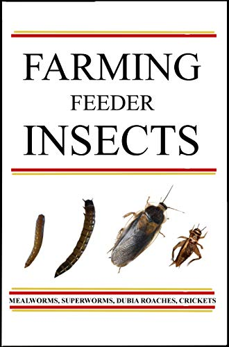 Farming Feeder Insects: A guide (English Edition)