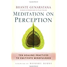 Meditation on Perception: Ten Healing Practices to Cultivate Mindfulness by Bhante Henepola Gunaratana (2014-06-10)