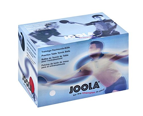JOOLA Tischtennisbälle Training 40 120er Karton, Weiß