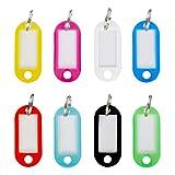 WINTEX® 100 Schlüsselschilder mit auswechselbarem Etikett, witterungsbeständig | 2 Jahre Zufriedenheitsgarantie | Schlüsselanhänger, Schlüssel-Beschriftung, Beschriftungsschild