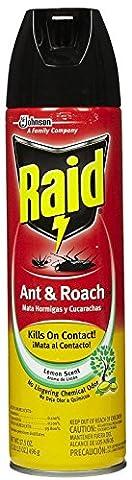 Raid Ant &leur Killer, Parfumé au citron 17,5 ml