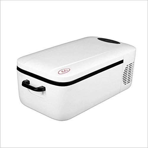 Q-HL Auto Elektrische Kühlschrank Kühlbox, 12L Auto Kühlschrank, tragbare Mini-Kühlschrank, AC und DC Hotspot-System, Thermostat, Medikamentenlager, Kosmetik-Kühlschrank