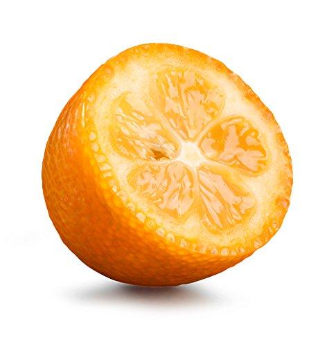 Obst & Gemüse Bio Kumquat (1 x 1000 gr)