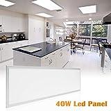 LED Panel Wandleuchte 120X30 Ultraslim Modern Deckenleuchte Schlafzimmer Küche Flur Wohnzimmer Lampe mit Befestigungsmaterial und Trafo (40W Silberrahmen Neutralweiß)