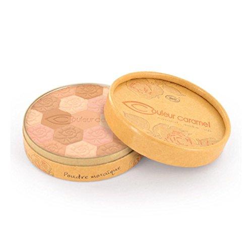 Poudre mosaique Bio teint clair - 232 - Couleur Caramel