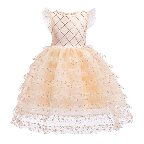 Pwtchenty Kleider Mädchen Baby Taufkleid Festlich Prinzessin Kleid Tutu Mesh Pailletten Bestickt BlumenMädchenkleid Hochzeit Partykleid Festzug Babybekleidung Für 0-9T