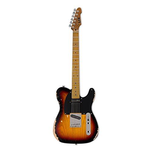 ESP LTD TE-254 D3TB (Esp Ltd Gitarre)