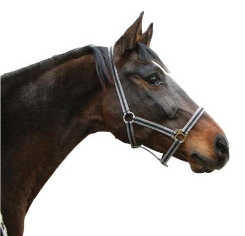 Kerbl Reitstiefel Hippo Head Halsband grau/schwarz