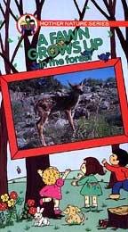 Preisvergleich Produktbild Fawn Grows Up in the Forest [VHS]